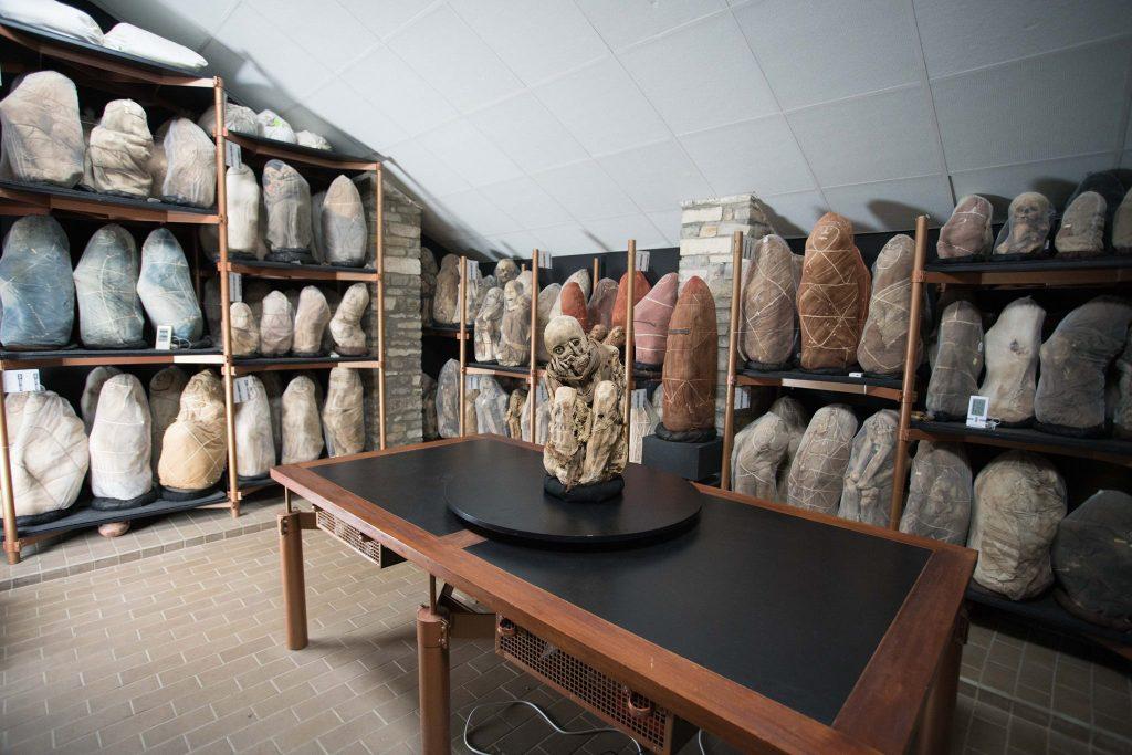 Chachapoya Mummies - Leymebamba Museum